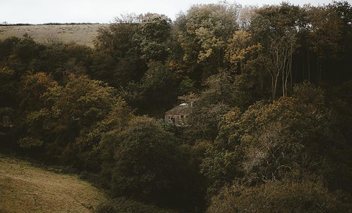 A dreamy escape amongst the trees
