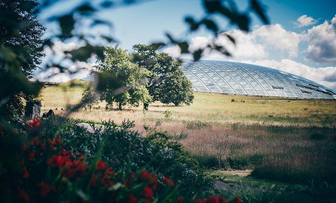 National Botanic Garden of Wales, Carmarthenshire