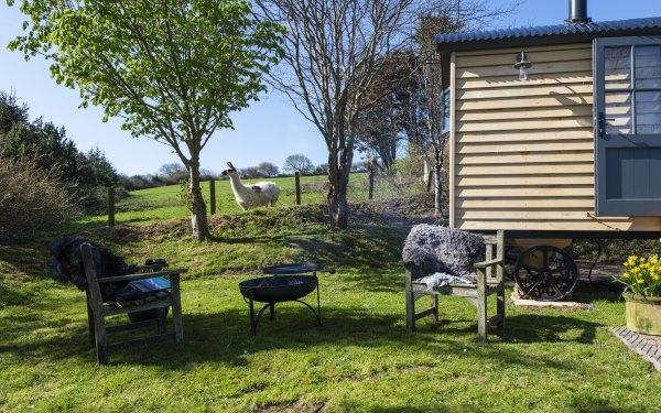Copperas Shepherd's Hut