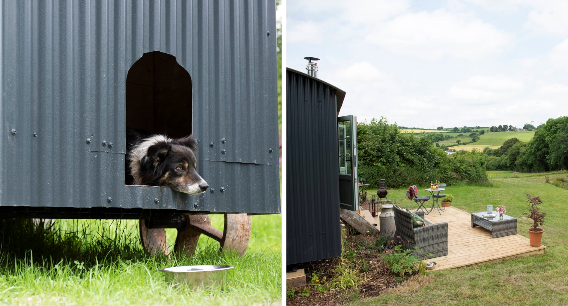 Shepherd's Rest - dog friendly