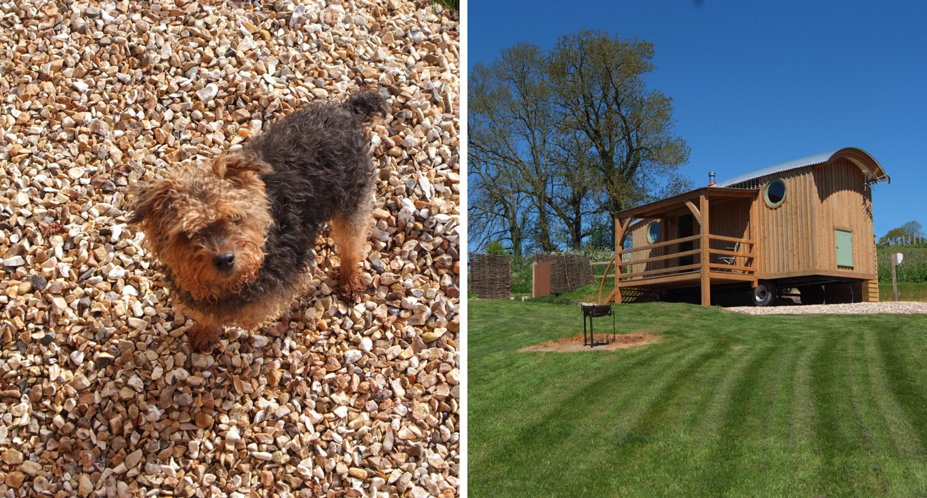 Wagon with Faraway Views - dog friendly