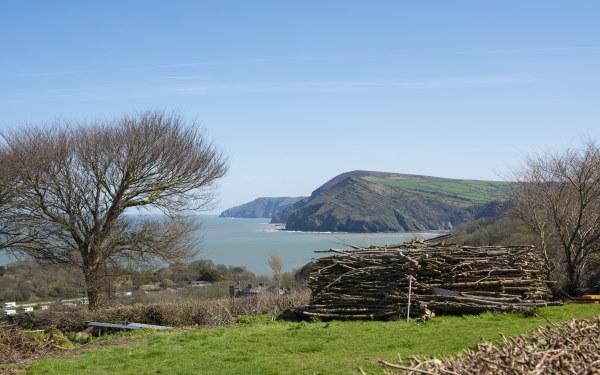 Wild Pear Shepherd's Hut sea view, Devon