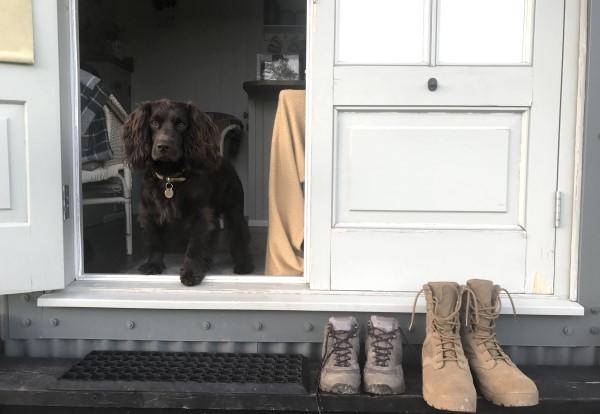 Dog friendly shepherd's hut