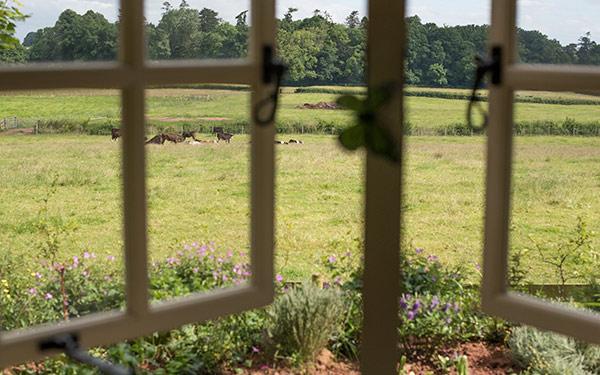 Lambs Tale Shepherd Hut